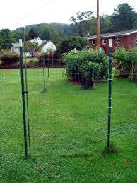 A Nearly Invisible Fishing Line Deer Fence Deer Fence Chicken Wire Fence Garden Fence