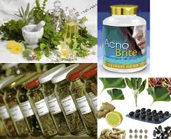 Herbal Medicine and Biotechnology for the Benefit of Human Health ...