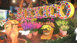 Image result for hot mexico day""