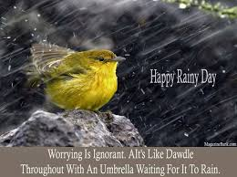 best rainy day wish pictures and photos