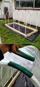 trendy garden diy greenhouse pvc pipes