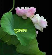 bengali good morning wishes images pics
