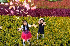 الشدوي يوثق أروع الصور للأطفال في مهرجان الورد والفاكهه بتبوك