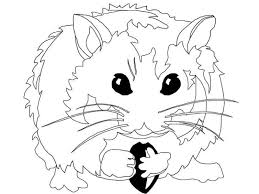 Hamster Coloring Pages For Clip Art Library