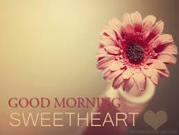 good morning sweetheart flower hd