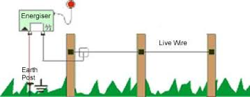 What Is A Great Electric Fence Get Yours Here Agrisellex