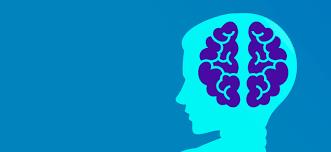 mindset programmer machine learning