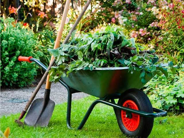 Image result for gardening services