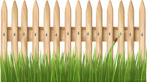 Grass Cartoon Clipart Fence Grass Wood Transparent Clip Art