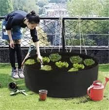 Should I Build Raised Garden Bed Along Fence Line