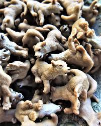 bulk micro miniature wolf pup animal