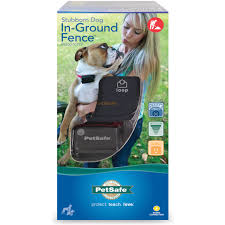 Stubborn Dog In Ground Fence By Petsafe Pig00 10777
