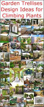 garden trellises design ideas for