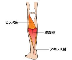 第5回 「ハイヒールが楽」は勘違い~「足底腱膜炎」の話をしましょう~|足の悩み、一挙解決|時事メディカル