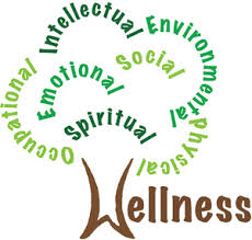What is Wellness   High Point University   High Point, NC