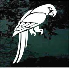 Pretty Parrot Car Window Decals Stickers Decal Junky