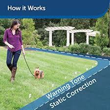 Explore Electric Fences For Dogs Amazon Com