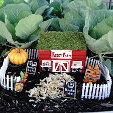 Fall Fairy Garden Pumpkin Patch Project By Decoart