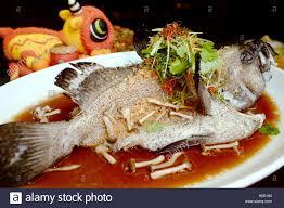 Hong Kong style steamed dragon grouper ...