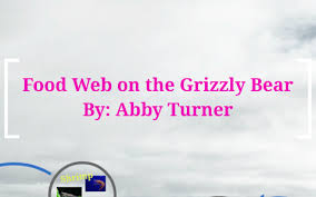 Food Web on the Grizzly Bear by Abby Turner