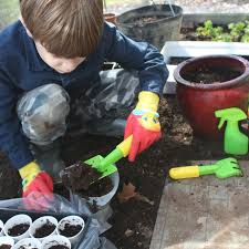 teach kids how to care for plants