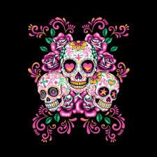 pink skull wallpapers top free pink