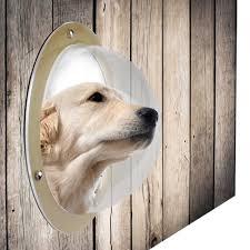 Dog Door Animals Window Pets Supplies Pet Fence Window Cat And Dog Peek At Durable Acrylic Window Houses Kennels Pens Aliexpress