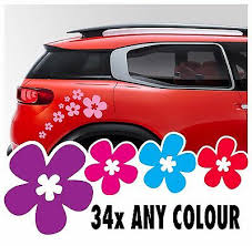 34 Daisy Stickers Vinyl Decal Kit Flower Car Ds3 Wall Saxo Mini Vw Beetle Camper Ebay