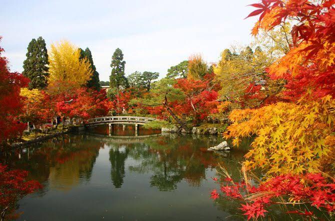 「秋 京都」の画像検索結果