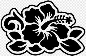 Sticker Flower Car Decal Surf Board Leaf Symmetry Png Pngegg