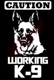 Caution Working Police K9 Dog Vinyl Decal Window Sticker Car Ebay