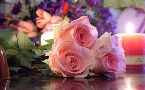 صور الورد صور ورد وزهور جميله محجبات
