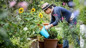 5 Secret Health Benefits of Gardening | Tasteful Space