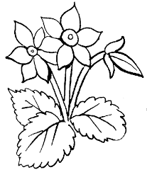 39 flowers black and white clipart
