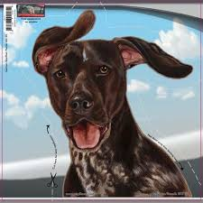 German Shorthair Pointer Dogs On The Move Window Decal Redd Waggin Pet Treat Truck