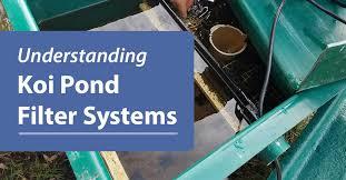 understanding koi pond filter system