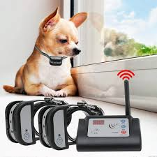 Best Wireless Electric Dog Fence With Training Shock Collar Underground Fencing Horizon Care