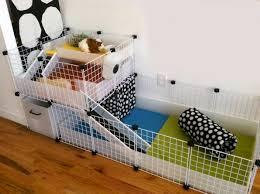 how to build a diy guinea pig cage