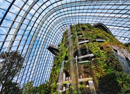 the cloud forest a certain slant of