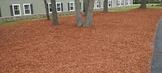 using cedar mulch pros and cons