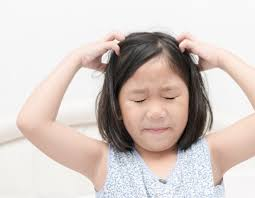 how to treat and prevent head lice if