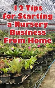 12 tips for starting a nursery business