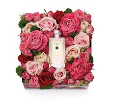 best beauty fragrance and makeup gifts