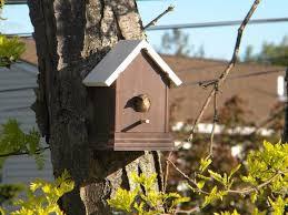 Easy Diy Fence Post Birdhouse Hometalk