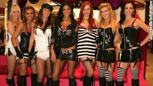 the cat dolls are reuniting for x