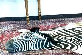 faux zebra rug terencesundberg co