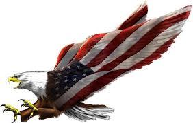 American Flag Eagle Vinyl Graphic Decal Rv Motorhome Camper Mural Bald Eagle American Flag Tattoo Eagle