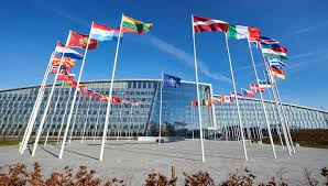 NATO - News: NATO Defence Ministers meet to discuss COVID-19, 14 ...