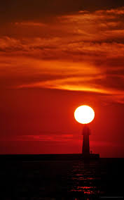 1600x2560 خلفية غروب الشمس Phablet خلفيات Hd 768383
