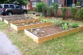 front yard vegetable garden design